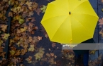 Yellow Umbrella Mutual to invest $500 mn in global multi-asset funds: report